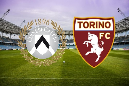 Udinese-Torino 2-2: Ljajic evita la sconfitta ai granata