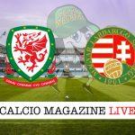 Galles Ungheria cronaca diretta live risultato in tempo reale