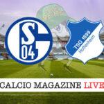 Schalke 04 Hoffenheim cronaca diretta live risultato in tempo reale
