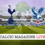 Tottenham Crystal Palace cronaca diretta risultato in tempo reale