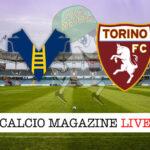 Hellas Verona - Torino cronaca diretta live risultato in tempo reale